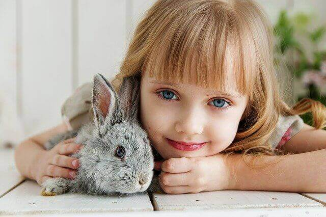Rabbit with girl